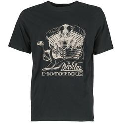 camisetas manga corta Dickies BRIDGEVILLE