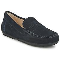 Zapatos Niño Mocasín Geox FAST Azul