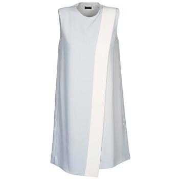 textil Mujer Vestidos cortos Joseph SOL Gris / Blanco