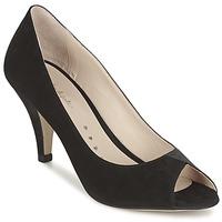 Zapatos Mujer Zapatos de tacón Petite Mendigote REUNION Negro