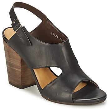 Zapatos Mujer Sandalias Coclico CASPAR Negro
