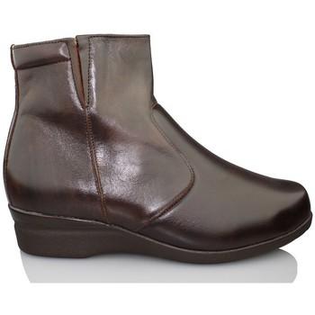 Zapatos Mujer Botines Dtorres SAPPORO B5B4 BOTIN MARRON