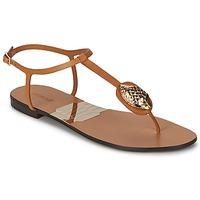 Zapatos Mujer Chanclas Roberto Cavalli XPX243-PZ220 Marrón