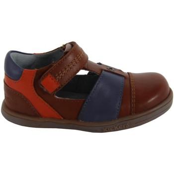 Zapatos Niño Derbie Kickers 413540-11 TROPICALI Marr?n