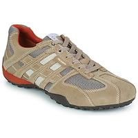Zapatos Hombre Zapatillas bajas Geox SNAKE Beige