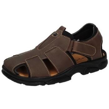 Zapatos Hombre Sandalias Dliro Sandalia todo piel Marrón