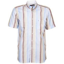 textil Hombre camisas manga corta Pierre Cardin 539936240-130 Azul / Beige / Marrón