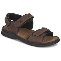 Zapatos Hombre Sandalias Josef Seibel RAFE Marrón / Negro
