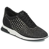 Zapatos Mujer Zapatillas bajas Luciano Barachini SOHO Negro