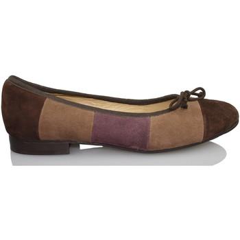 Zapatos Mujer Bailarinas-manoletinas Sandra Stylo COCOO MARRON