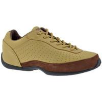 Zapatos Hombre Zapatillas altas Dr Martens  Beige