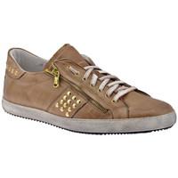 Zapatos Hombre Zapatillas bajas Exton  Beige