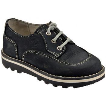 Zapatos Niños Zapatillas altas Lumberjack  Azul