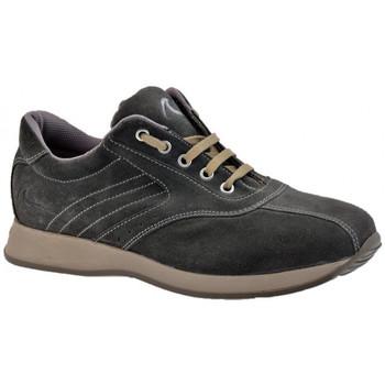 Zapatos Hombre Zapatillas altas Docksteps  Gris