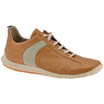 Zapatos Hombre Zapatillas altas Docksteps  Marrón