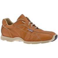Zapatos Hombre Zapatillas altas Docksteps  Beige