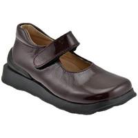 Zapatos Niños Bailarinas-manoletinas Naturino  Marrón