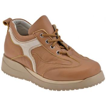 Zapatos Niño Derbie Chicco  Marrón