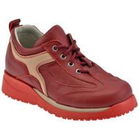 Zapatos Niños Zapatillas altas Chicco  Rojo