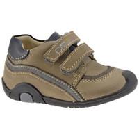 Zapatos Niña Zapatillas bajas Chicco  Gris