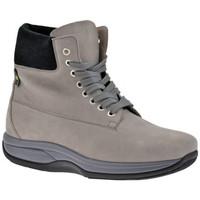 Zapatos Hombre Senderismo Bob Molla  Gris