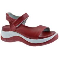 Zapatos Niños Sandalias Fornarina  Rojo