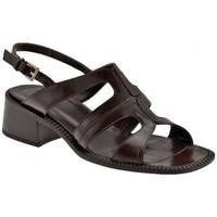 Zapatos Mujer Sandalias Now  Marrón