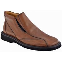 Zapatos Hombre Mocasín Nicola Barbato  Marrón