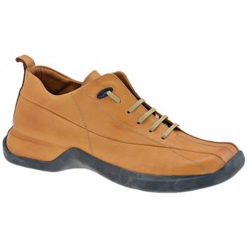 Zapatos Hombre Zapatillas altas Pawelk's  Marrón