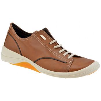 Zapatos Hombre Zapatillas bajas Pawelk's  Marrón