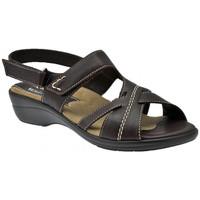 Zapatos Mujer Sandalias Susimoda  Multicolor