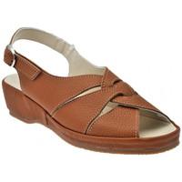 Zapatos Mujer Sandalias Susimoda  Marrón