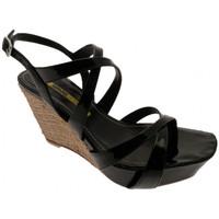 Zapatos Mujer Sandalias Lea Foscati  Negro