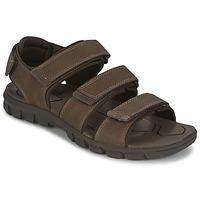 Zapatos Hombre Sandalias Caterpillar ENTRANT Marrón