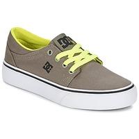 Zapatos Niño Zapatillas bajas DC Shoes TRASE TX Topotea