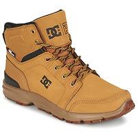 Botas de caña baja DC Shoes TORSTEIN