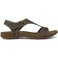 Zapatos Mujer Sandalias Interbios SANDALIA COMODA ANATOMICA PARDO