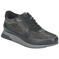 Zapatos Mujer Zapatillas bajas Luciano Barachini OXFORD Negro / Gris
