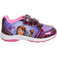 Zapatos Niña Zapatillas bajas Sofia SO000851-B2049 Morado