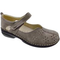 Zapatos Mujer Bailarinas-manoletinas Calzaturificio Loren LOM2313ta tortora