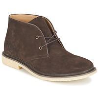Zapatos Hombre Botas de caña baja Cool shoe DESERT BOOT Marrón