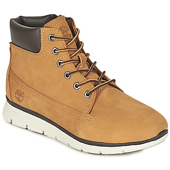 Zapatos Niños Botas de caña baja Timberland KILLINGTON 6 IN Trigo