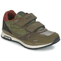 Zapatos Niño Zapatillas bajas Geox PAVEL Verde / Naranja