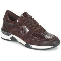 Zapatillas bajas Dream in Green FARRICA