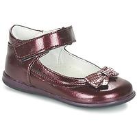Zapatos Niña Bailarinas-manoletinas Citrouille et Compagnie FRIZZY Burdeo