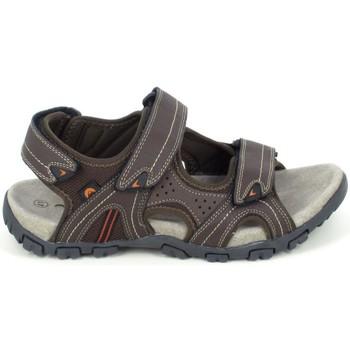 Zapatos Hombre Sandalias Elementerre Akka Marron Marrón