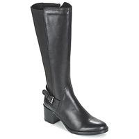 Zapatos Mujer Botas urbanas Betty London FAJIJE Negro