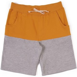 textil Hombre Shorts / Bermudas Lightning Bolt L.BOLT Block Color Triblend Shorts Inca Gold Gris