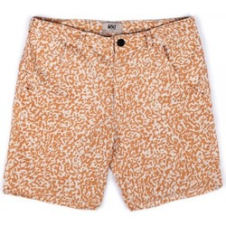 textil Hombre Shorts / Bermudas Lightning Bolt L.BOLT Printed Hemp WalkShort EGRET Multicolor