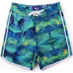 textil Hombre Bañadores Lightning Bolt L.Bolt Fractal Palmtree 16'' Vandura Verde